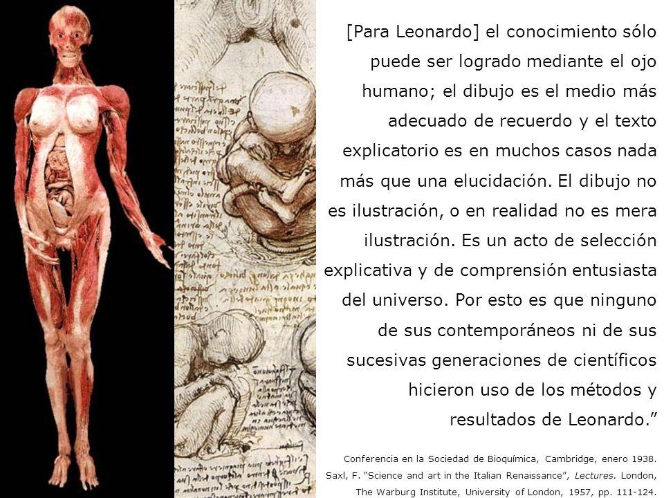 [Para Leonardo] el conocimiento sólo puede ser logrado mediante el ojo humano; el dibujo es el medio más adecuado de recuerdo y el texto explicatorio es en muchos casos nada más que una elucidación. El dibujo no es ilustración, o en realidad no es mera ilustración. Es un acto de selección explicativa y de comprensión entusiasta del universo. Por esto es que ninguno de sus contemporáneos ni de sus sucesivas generaciones de científicos hicieron uso de los métodos y resultados de Leonardo.